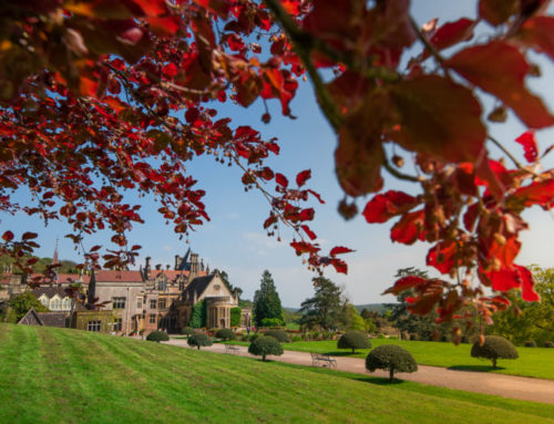 Tyntesfield National Trust – Somerset