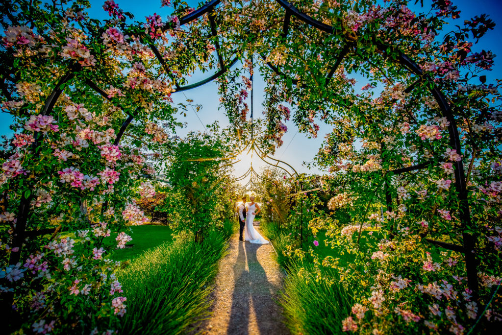 A bride and groom talking to each other in the rose arch at Nyland Manor in Somerset on their wedding day.