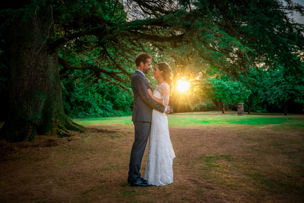 A bride and groom hugging under a tree on their wedding day at Leweston School in Dorset with the sun behind them.