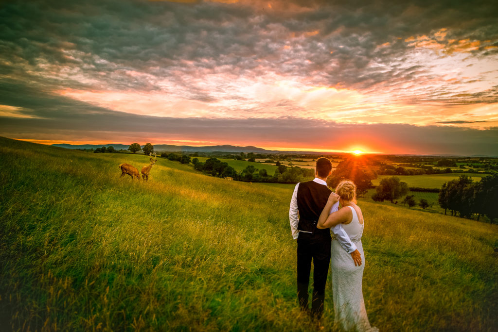A bride and Groom looking into the distance where the sun is setting and deer are present at Deer Park