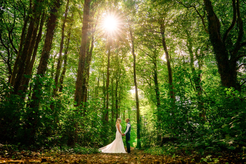 A bride and groom in the woods facing each other with the sun behind them at The Wind Whistle near chard in Somerset.