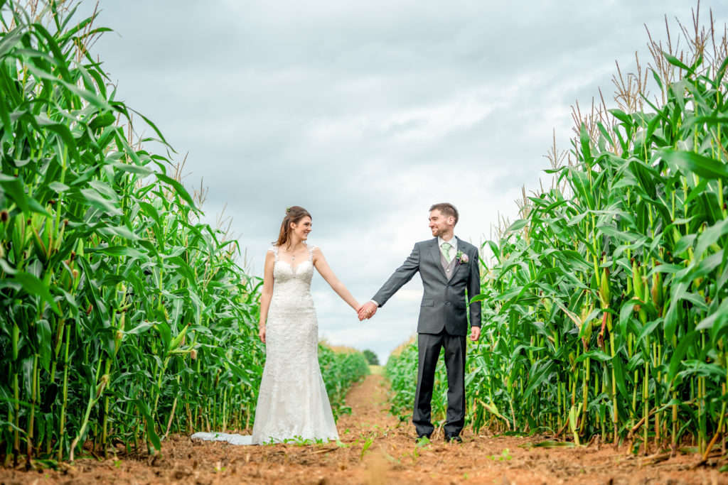 A bride and groom in a corn field at Quantock Lakes in Somerset on their wedding day.